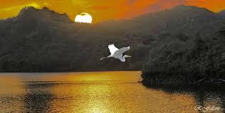 20161022041312-lake.jpg